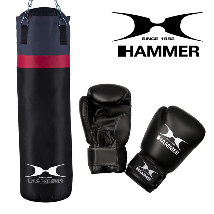 92066 hammer boxing box set cobra