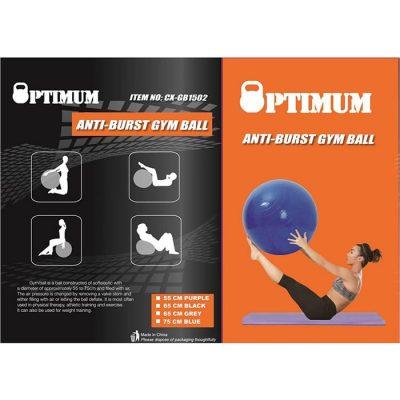 GYM BALL ANTI BURST 55 CM 900GR ΜΟΒ 2A